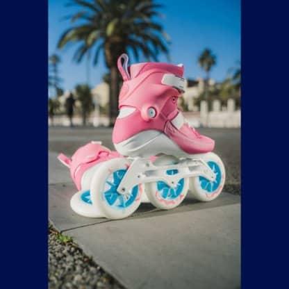 SKA510015 PS Swell Trinity Flamingo 125 Skateshop Weil am Rhein SkaMiDan
