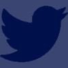 Social Media Twitter Button von SkaMiDan – Skating School & Skateshop
